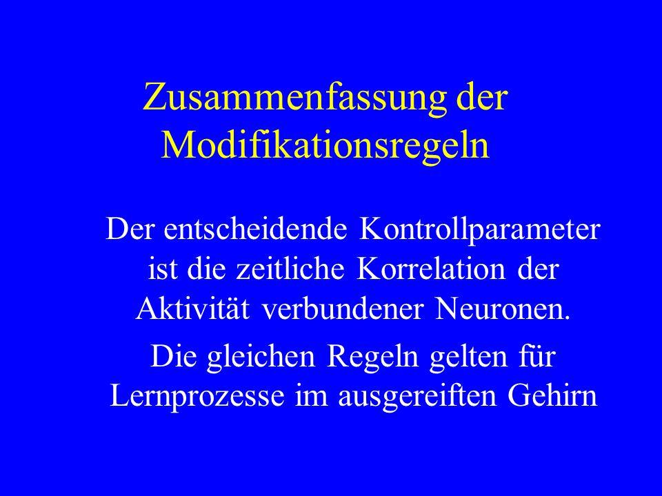 Zusammenfassung der Modifikationsregeln Der entscheidende Kontrollparameter ist die zeitliche Korrelation der Aktivität verbundener Neuronen. Die glei
