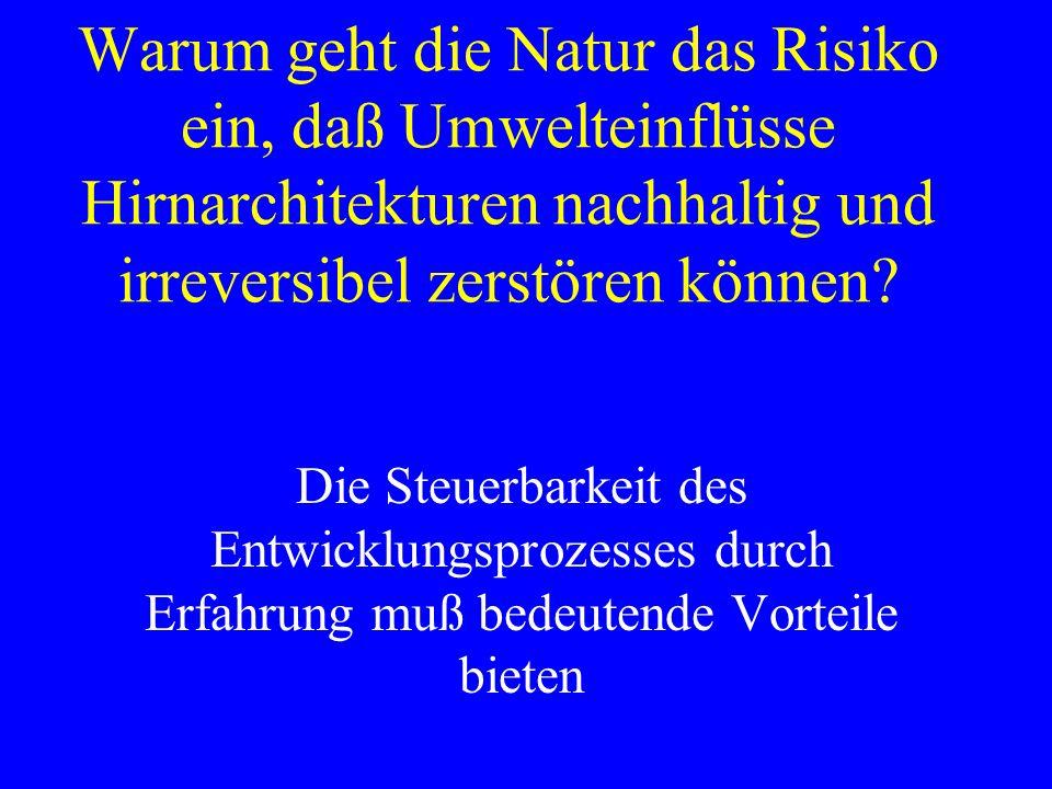 Warum geht die Natur das Risiko ein, daß Umwelteinflüsse Hirnarchitekturen nachhaltig und irreversibel zerstören können? Die Steuerbarkeit des Entwick