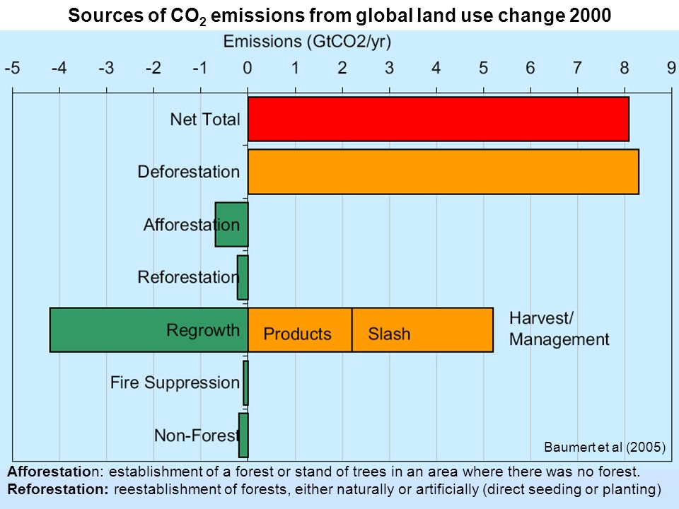 Baumert et al (2005) Sources of CO 2 emissions from global land use change 2000 Afforestation: establishment of a forest or stand of trees in an area