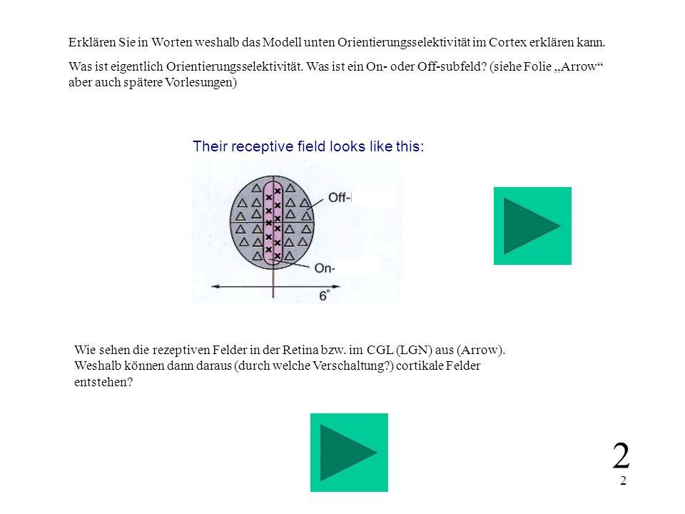3 Erklären Sie nebenstehendes Diagram in Worten (Arrow).
