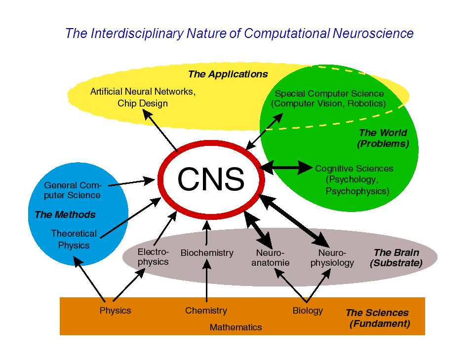 5 What is computational neuroscience ? The Interdisciplinary Nature of Computational Neuroscience