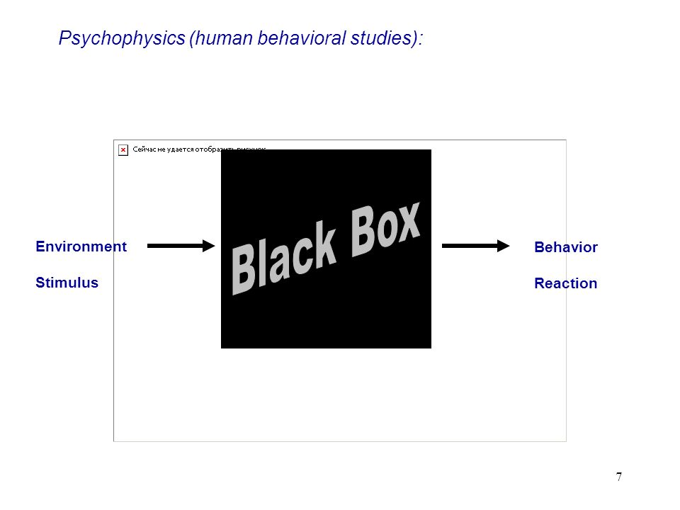 7 Psychophysics (human behavioral studies): Environment Stimulus Behavior Reaction