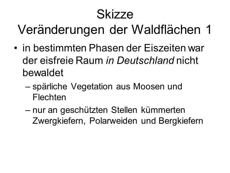 Skizze Veränderungen der Waldflächen 1 in bestimmten Phasen der Eiszeiten war der eisfreie Raum in Deutschland nicht bewaldet –spärliche Vegetation au