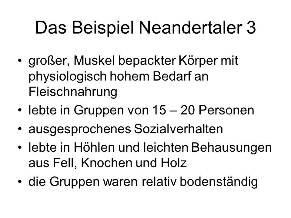 Das Beispiel Neandertaler 3 großer, Muskel bepackter Körper mit physiologisch hohem Bedarf an Fleischnahrung lebte in Gruppen von 15 – 20 Personen aus
