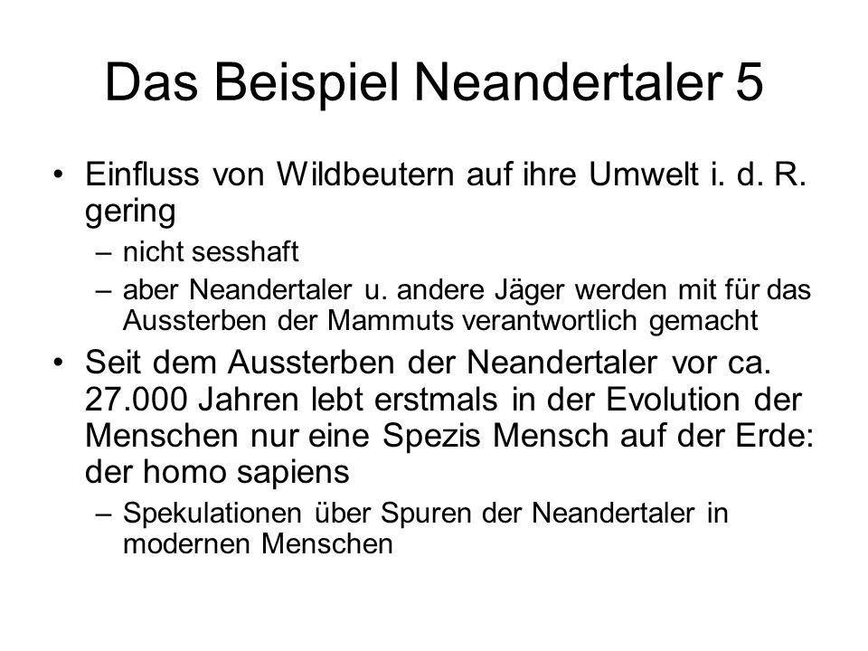 Das Beispiel Neandertaler 5 Einfluss von Wildbeutern auf ihre Umwelt i. d. R. gering –nicht sesshaft –aber Neandertaler u. andere Jäger werden mit für
