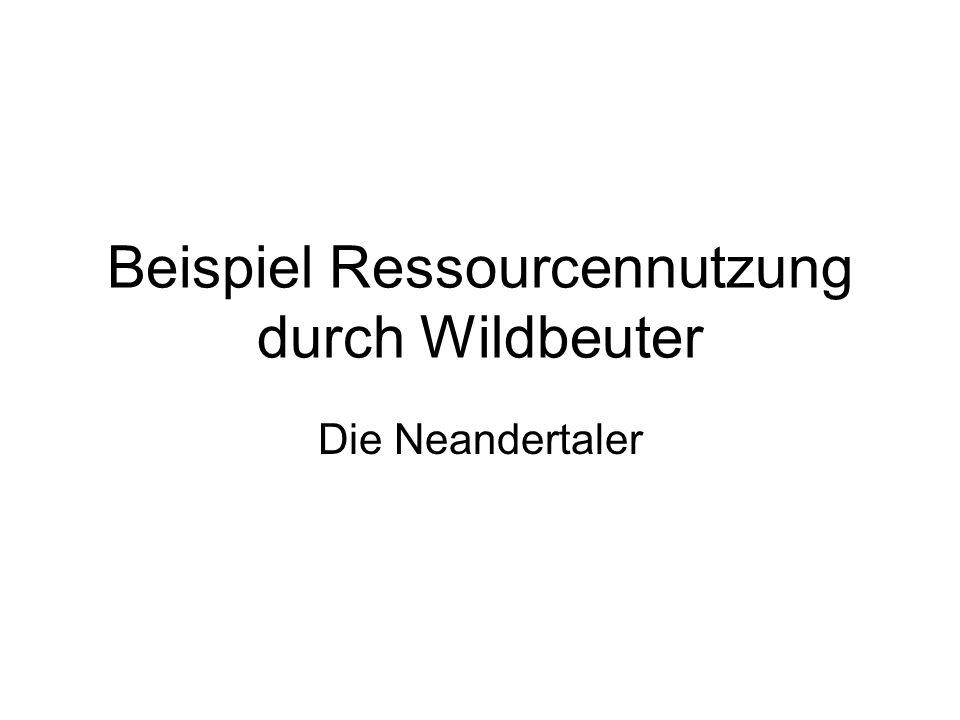 Beispiel Ressourcennutzung durch Wildbeuter Die Neandertaler