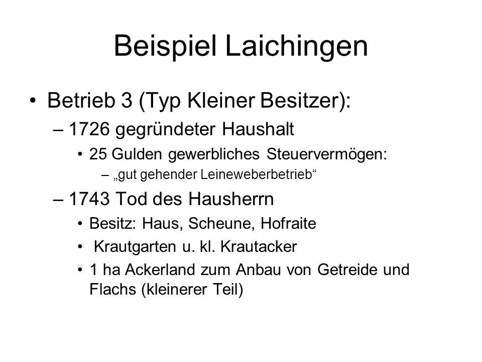 Beispiel Laichingen Betrieb 3 (Typ Kleiner Besitzer): –1726 gegründeter Haushalt 25 Gulden gewerbliches Steuervermögen: –gut gehender Leineweberbetrie
