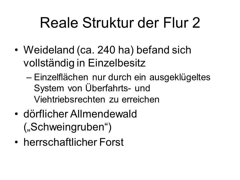 Reale Struktur der Flur 2 Weideland (ca. 240 ha) befand sich vollständig in Einzelbesitz –Einzelflächen nur durch ein ausgeklügeltes System von Überfa