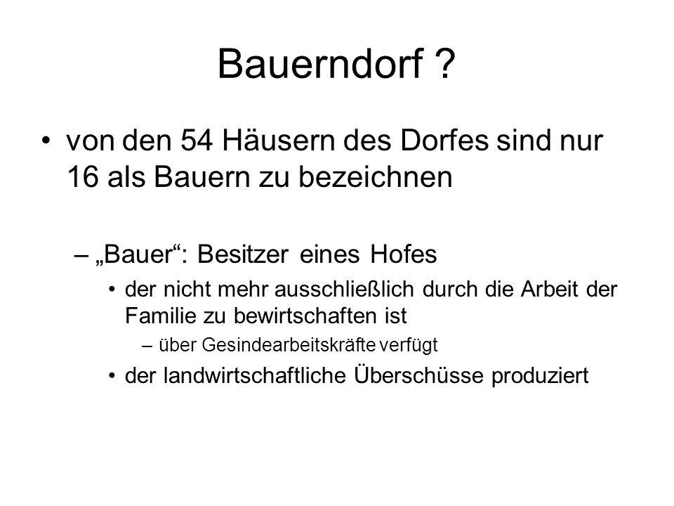 Bauerndorf ? von den 54 Häusern des Dorfes sind nur 16 als Bauern zu bezeichnen –Bauer: Besitzer eines Hofes der nicht mehr ausschließlich durch die A