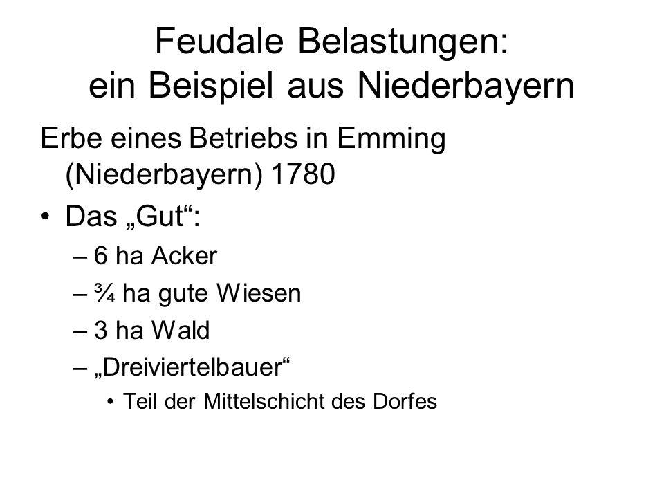 Feudale Belastungen: ein Beispiel aus Niederbayern Erbe eines Betriebs in Emming (Niederbayern) 1780 Das Gut: –6 ha Acker –¾ ha gute Wiesen –3 ha Wald