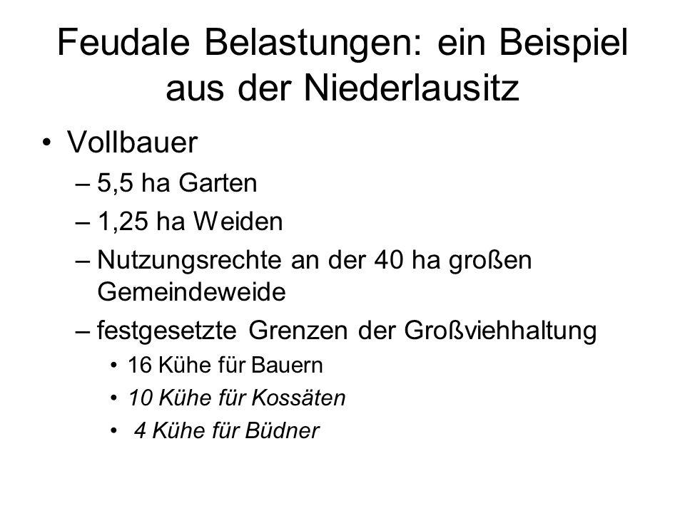 Feudale Belastungen: ein Beispiel aus der Niederlausitz Vollbauer –5,5 ha Garten –1,25 ha Weiden –Nutzungsrechte an der 40 ha großen Gemeindeweide –fe