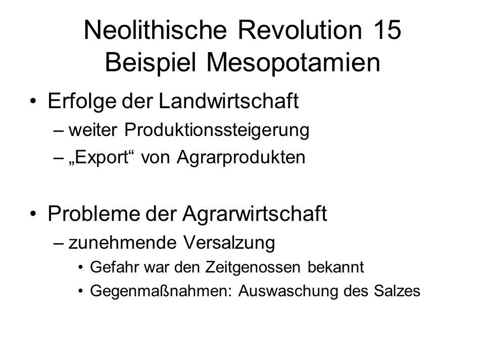 Neolithische Revolution 15 Beispiel Mesopotamien Erfolge der Landwirtschaft –weiter Produktionssteigerung –Export von Agrarprodukten Probleme der Agra