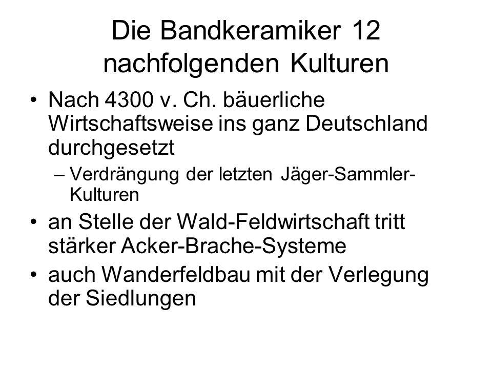 Die Bandkeramiker 12 nachfolgenden Kulturen Nach 4300 v. Ch. bäuerliche Wirtschaftsweise ins ganz Deutschland durchgesetzt –Verdrängung der letzten Jä