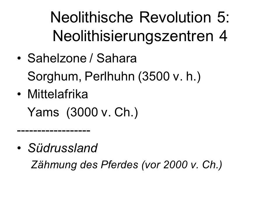Neolithische Revolution 5: Neolithisierungszentren 4 Sahelzone / Sahara Sorghum, Perlhuhn (3500 v. h.) Mittelafrika Yams (3000 v. Ch.) ---------------