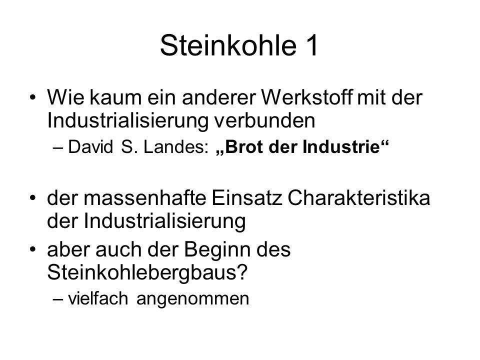 Steinkohle 1 Wie kaum ein anderer Werkstoff mit der Industrialisierung verbunden –David S. Landes: Brot der Industrie der massenhafte Einsatz Charakte