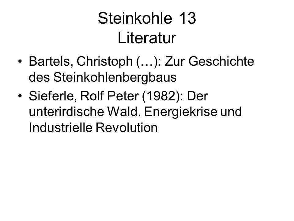 Steinkohle 13 Literatur Bartels, Christoph (…): Zur Geschichte des Steinkohlenbergbaus Sieferle, Rolf Peter (1982): Der unterirdische Wald. Energiekri