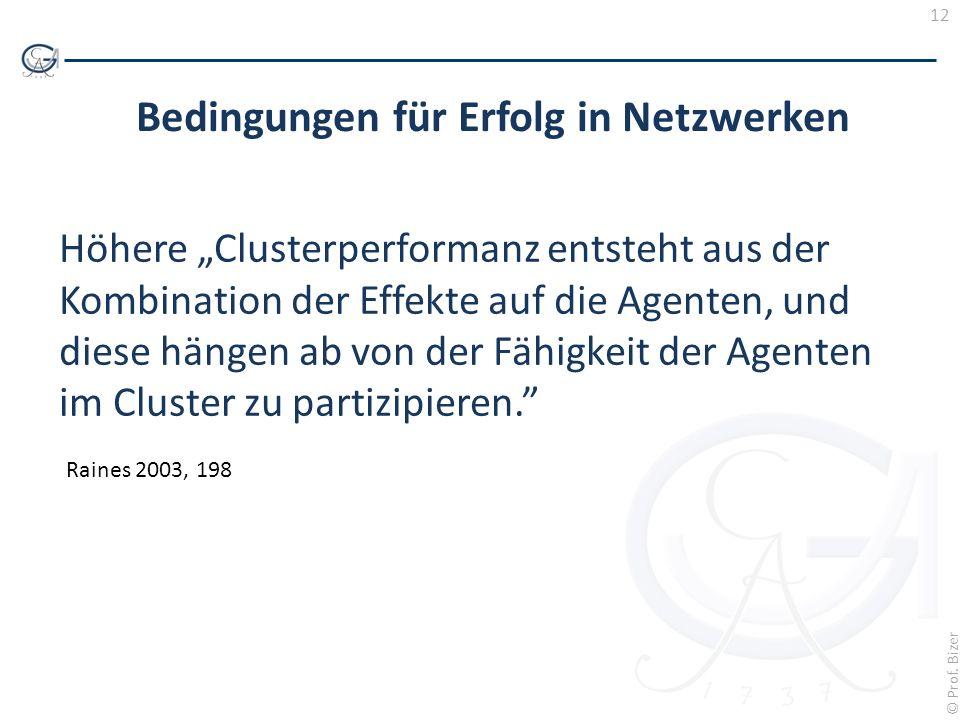 12 © Prof. Bizer Bedingungen für Erfolg in Netzwerken Höhere Clusterperformanz entsteht aus der Kombination der Effekte auf die Agenten, und diese hän