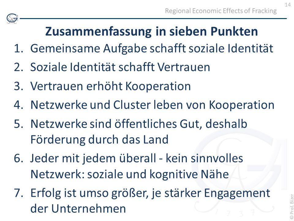 14 © Prof. Bizer Zusammenfassung in sieben Punkten 1.Gemeinsame Aufgabe schafft soziale Identität 2.Soziale Identität schafft Vertrauen 3.Vertrauen er
