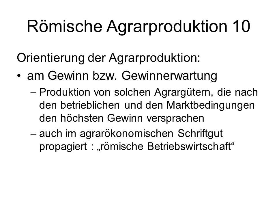 Römische Agrarproduktion 10 Orientierung der Agrarproduktion: am Gewinn bzw.