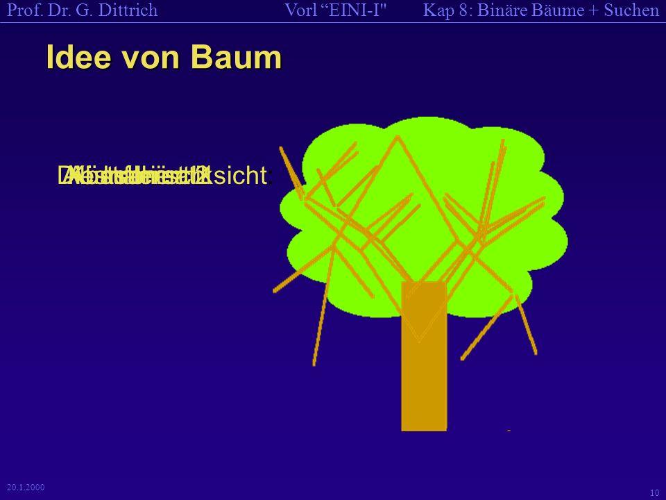 Kap 8: Binäre Bäume + SuchenVorl EINI-I