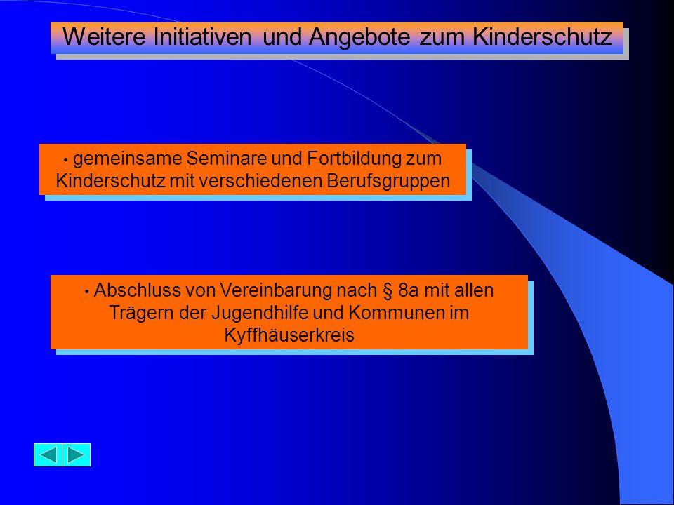 gemeinsame Seminare und Fortbildung zum Kinderschutz mit verschiedenen Berufsgruppen Abschluss von Vereinbarung nach § 8a mit allen Trägern der Jugend