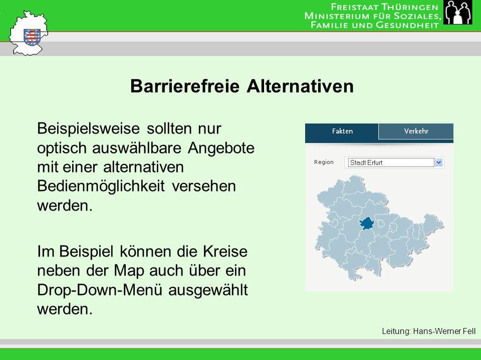 Barrierefreie Alternativen Leitung: Eva Morgenroth Beispielsweise sollten nur optisch auswählbare Angebote mit einer alternativen Bedienmöglichkeit ve