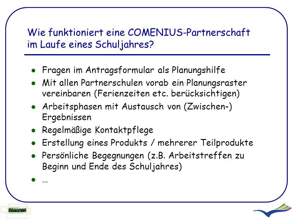 Wie funktioniert eine COMENIUS-Partnerschaft im Laufe eines Schuljahres? Fragen im Antragsformular als Planungshilfe Mit allen Partnerschulen vorab ei