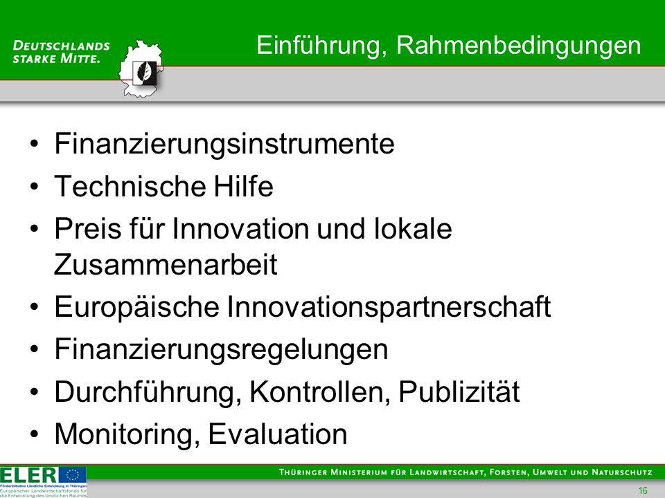 Einführung, Rahmenbedingungen Finanzierungsinstrumente Technische Hilfe Preis für Innovation und lokale Zusammenarbeit Europäische Innovationspartnerschaft Finanzierungsregelungen Durchführung, Kontrollen, Publizität Monitoring, Evaluation 16