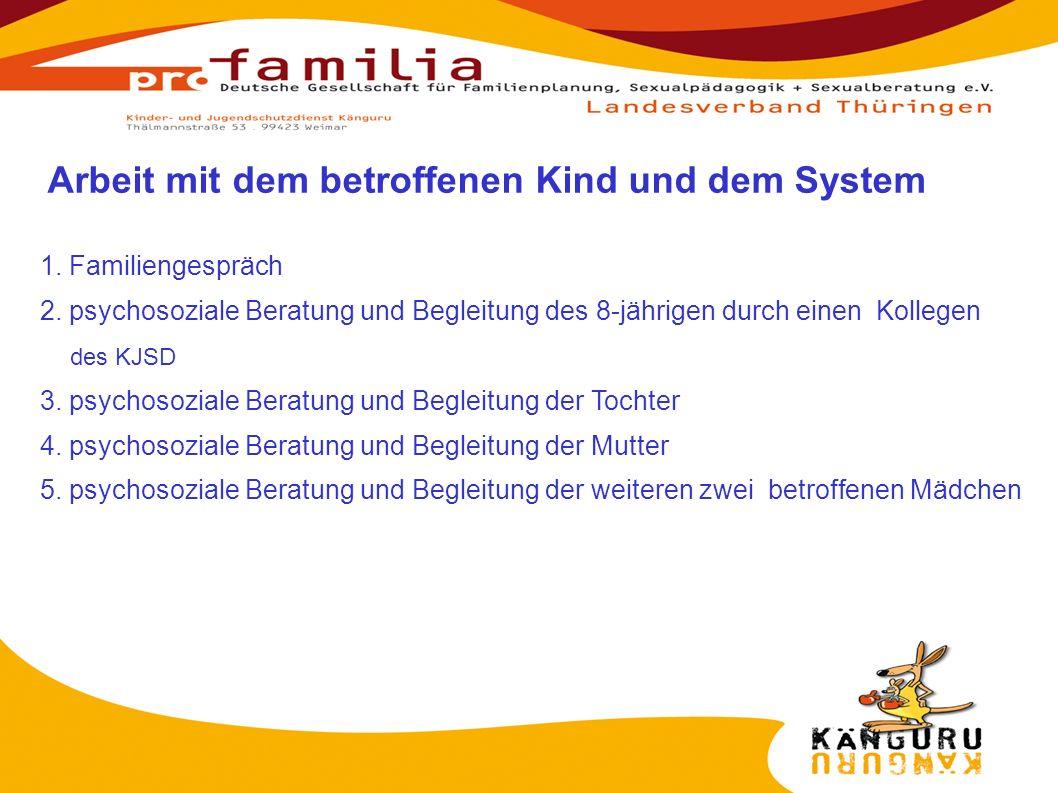 1. Familiengespräch 2. psychosoziale Beratung und Begleitung des 8-jährigen durch einen Kollegen des KJSD 3. psychosoziale Beratung und Begleitung der