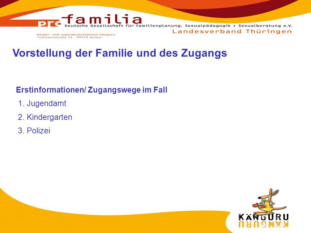 Erstinformationen/ Zugangswege im Fall 1. Jugendamt 2. Kindergarten 3. Polizei Vorstellung der Familie und des Zugangs