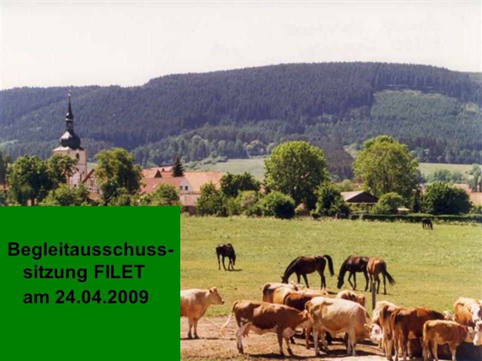 Thüringer Ministerium für Landwirtschaft, Naturschutz und Umwelt 3. BGA am 24. April 2009 Begleitausschusssitzung FILET am 24.04.2009 Begleitausschuss