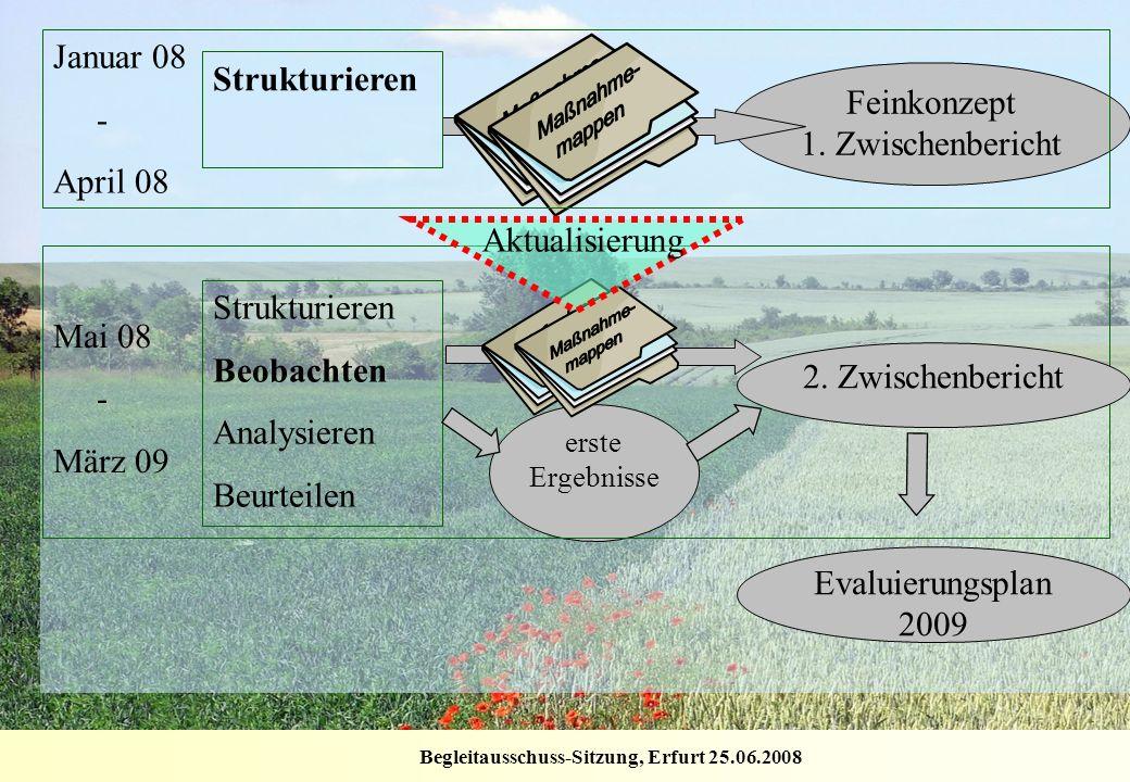 Begleitausschuss-Sitzung, Erfurt 25.06.2008 Feinkonzept 1. Zwischenbericht erste Ergebnisse Strukturieren Januar 08 - April 08 Strukturieren Beobachte