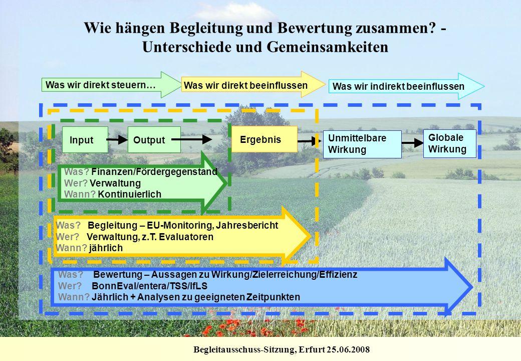 Begleitausschuss-Sitzung, Erfurt 25.06.2008 Unmittelbare Wirkung Globale Wirkung Was? Bewertung – Aussagen zu Wirkung/Zielerreichung/Effizienz Wer? Bo