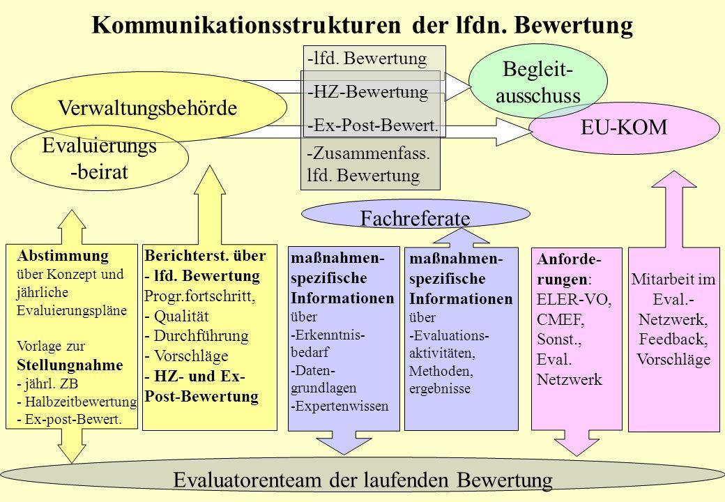 Begleitausschuss-Sitzung, Erfurt 25.06.2008 Kommunikationsstrukturen der lfdn. Bewertung Fachreferate Evaluatorenteam der laufenden Bewertung EU-KOM m