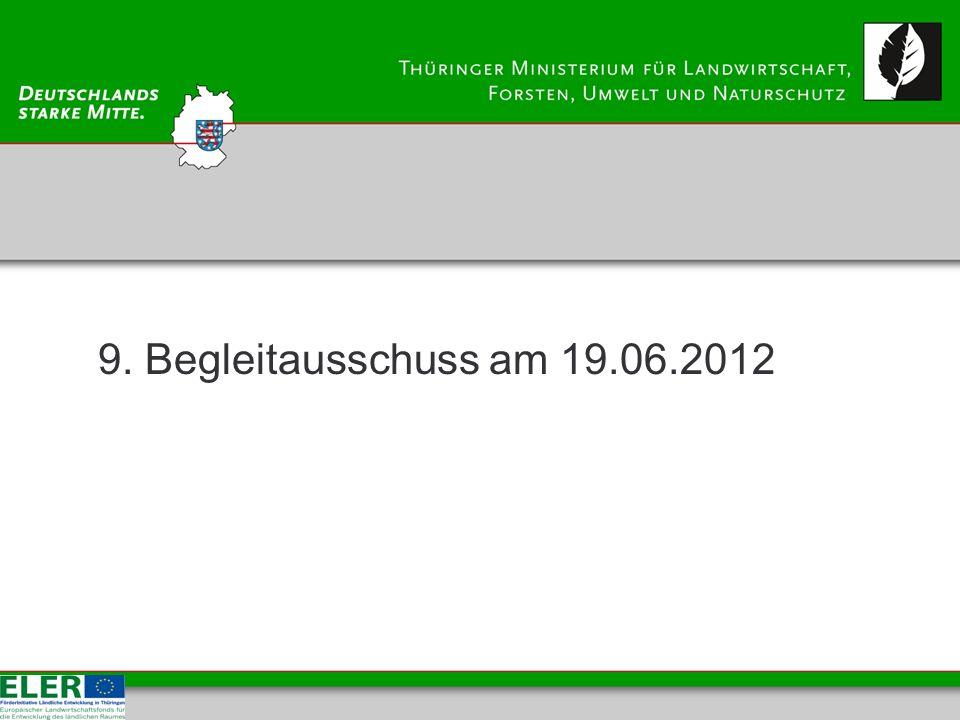 9. Begleitausschuss am 19.06.2012