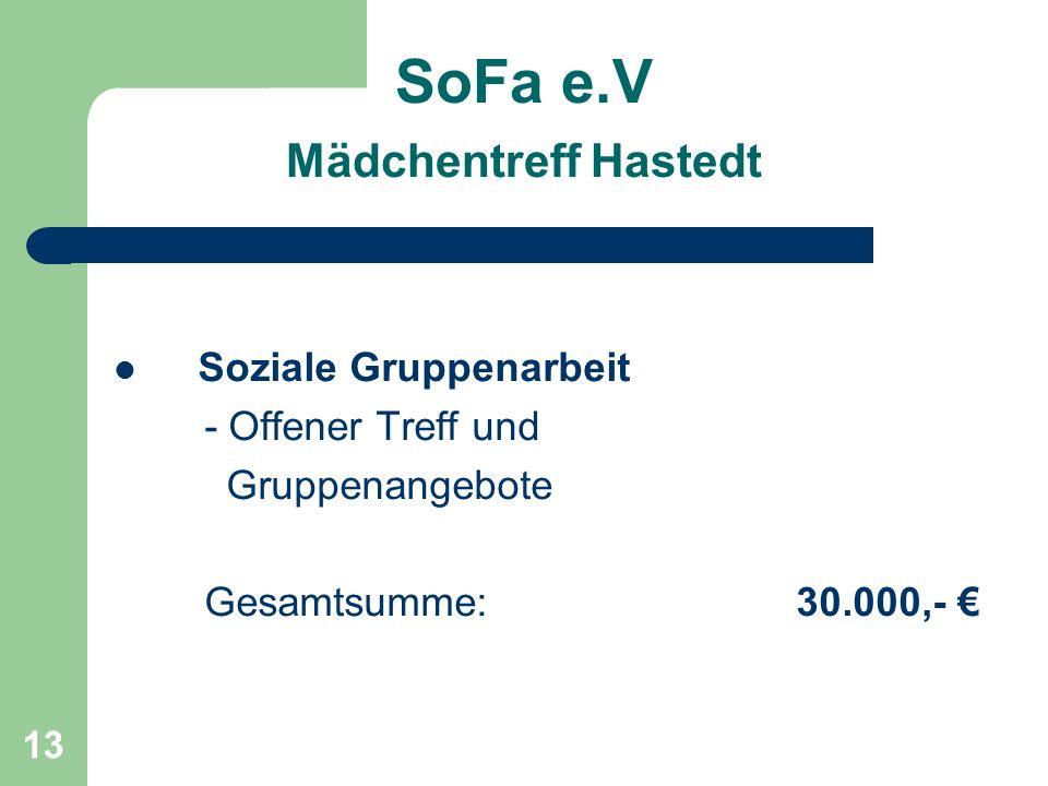 13 SoFa e.V Mädchentreff Hastedt Soziale Gruppenarbeit - Offener Treff und Gruppenangebote Gesamtsumme: 30.000,-