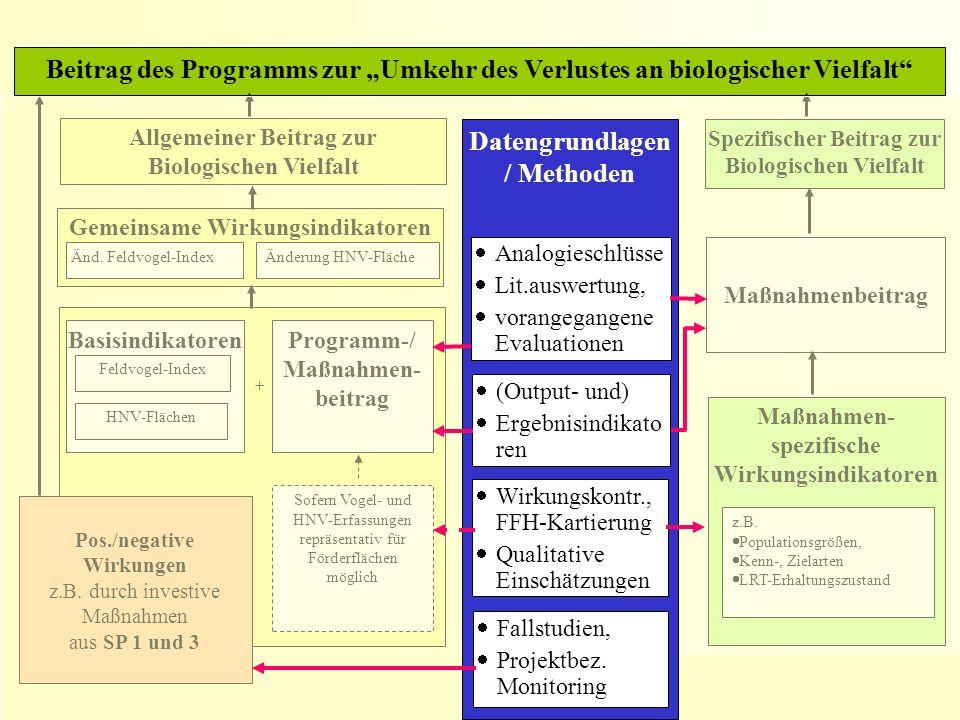 4. Sitzung des Begleitausschusses, Erfurt, 10. Juni 2009 Gemeinsame Wirkungsindikatoren Basisindikatoren Beitrag des Programms zur Umkehr des Verluste