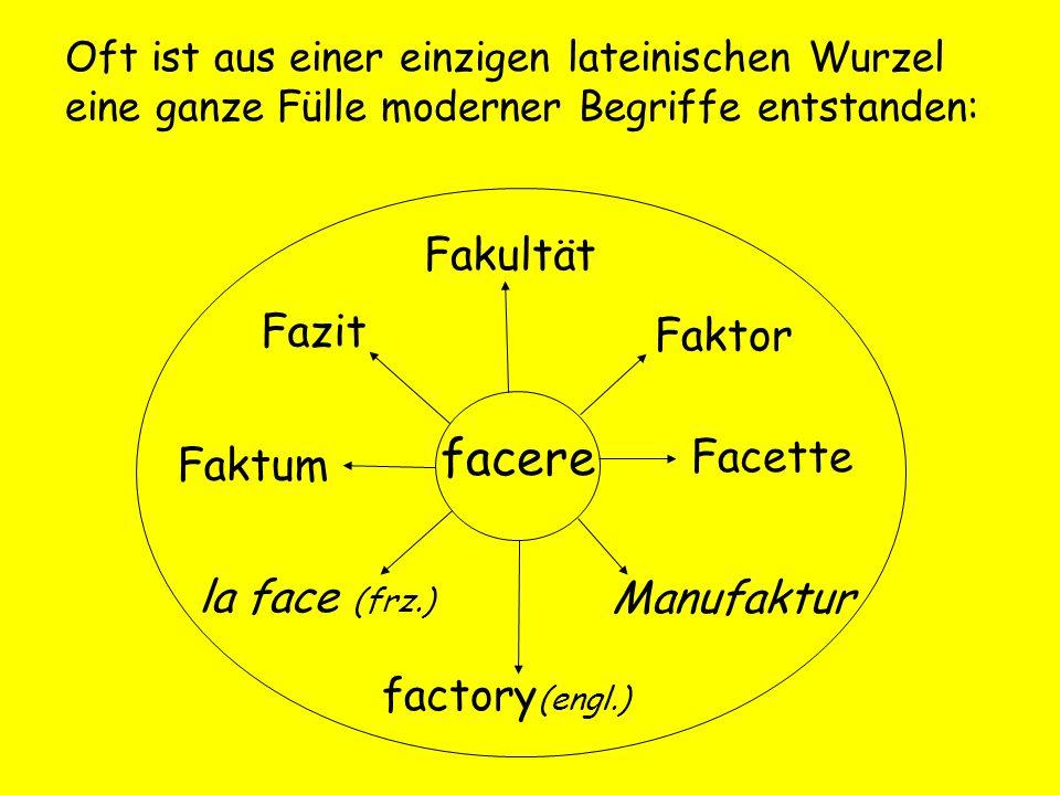 Oft ist aus einer einzigen lateinischen Wurzel eine ganze Fülle moderner Begriffe entstanden: facere Faktum Fazit Fakultät Faktor Facette Manufaktur f