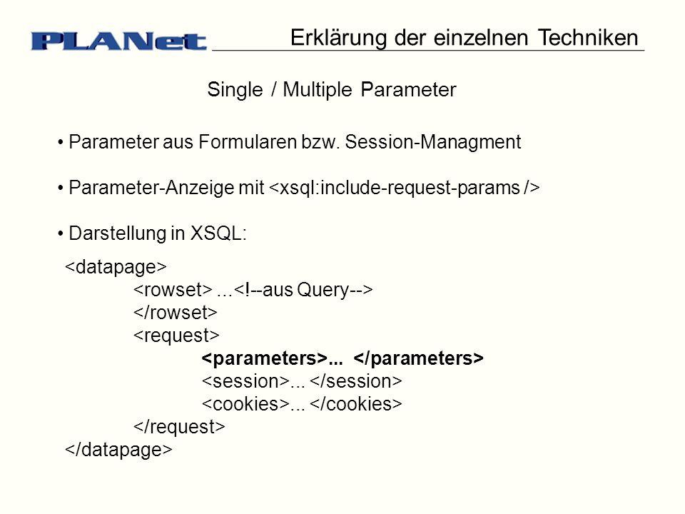 Erklärung der einzelnen Techniken Single / Multiple Parameter Parameter aus Formularen bzw. Session-Managment Parameter-Anzeige mit Darstellung in XSQ