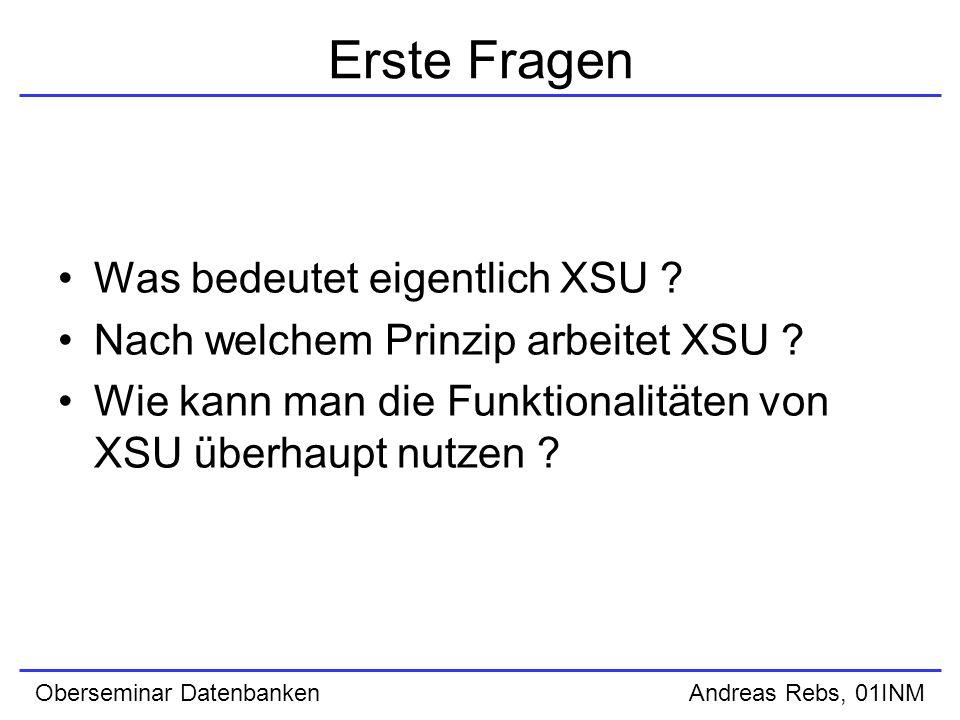 Erste Fragen Was bedeutet eigentlich XSU . Nach welchem Prinzip arbeitet XSU .