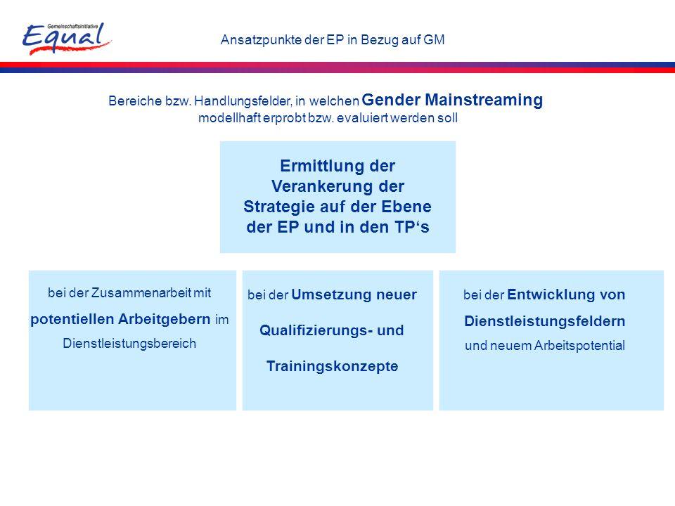 Bereiche bzw. Handlungsfelder, in welchen Gender Mainstreaming modellhaft erprobt bzw. evaluiert werden soll Ansatzpunkte der EP in Bezug auf GM bei d