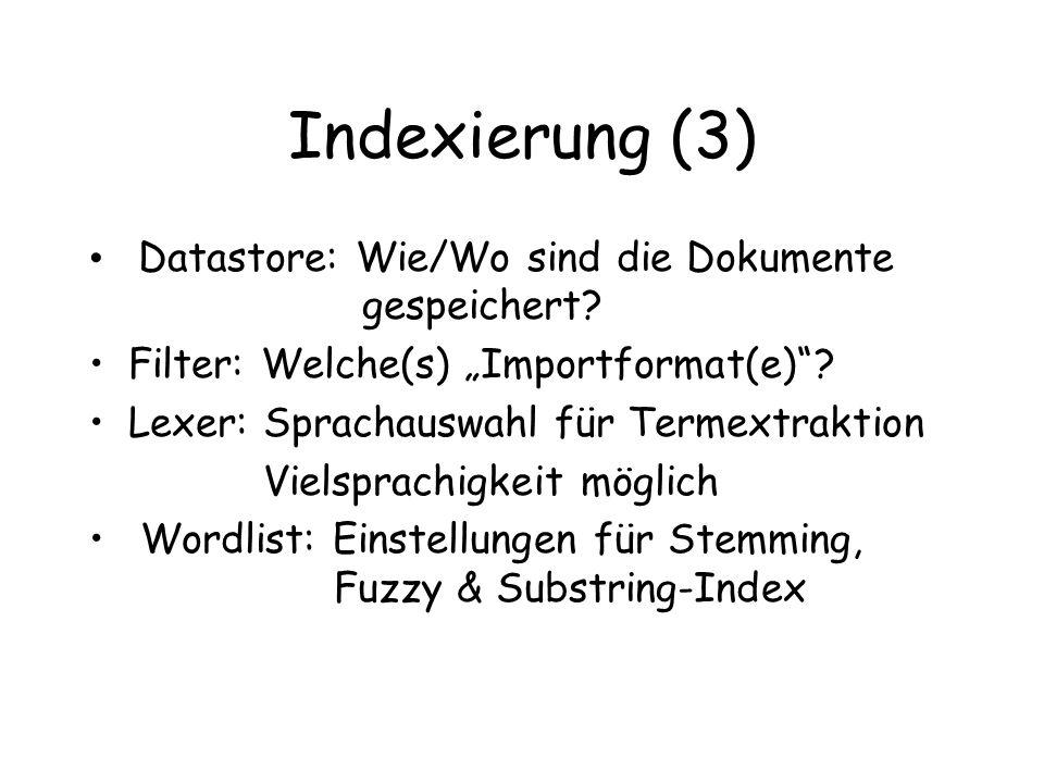 Indexierung (3) Datastore: Wie/Wo sind die Dokumente gespeichert.