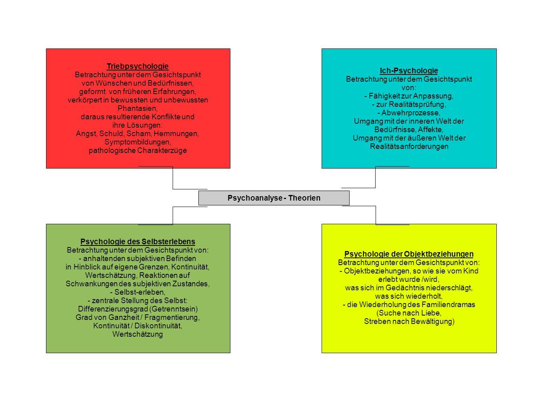 Triebpsychologie Betrachtung unter dem Gesichtspunkt von Wünschen und Bedürfnissen, geformt von früheren Erfahrungen, verkörpert in bewussten und unbe