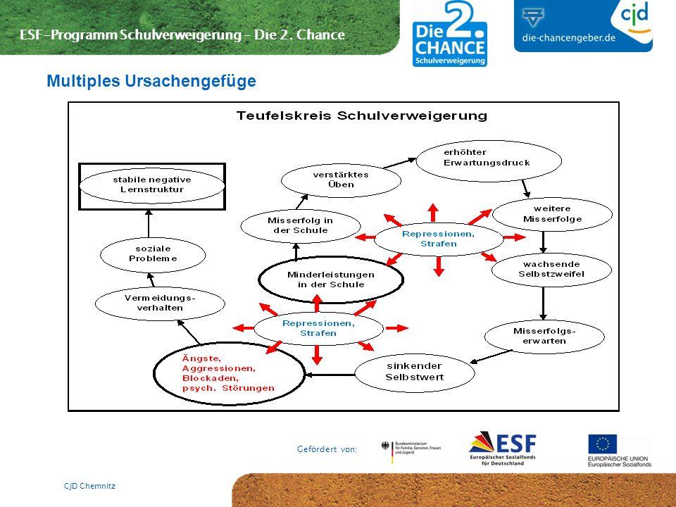 ESF-Programm Schulverweigerung – Die 2. Chance Gefördert von: CJD Chemnitz Multiples Ursachengefüge