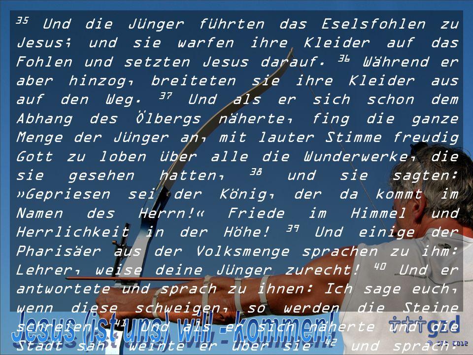 35 Und die Jünger führten das Eselsfohlen zu Jesus; und sie warfen ihre Kleider auf das Fohlen und setzten Jesus darauf.