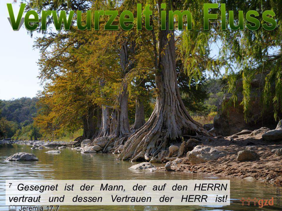GZD 2012 7 Gesegnet ist der Mann, der auf den HERRN vertraut und dessen Vertrauen der HERR ist! Jeremia 17,7