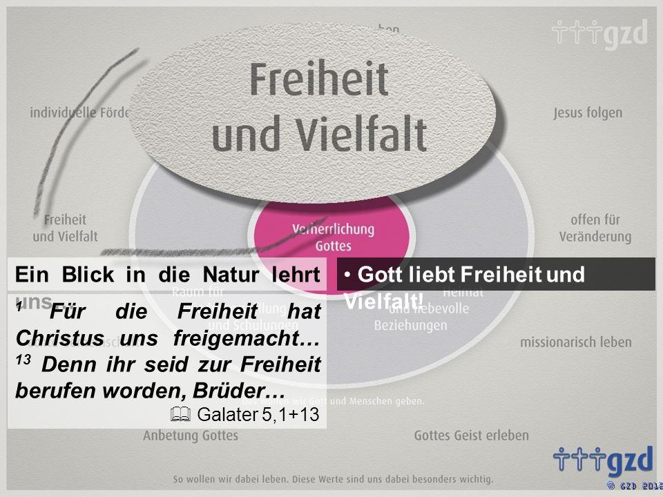 GZD 2012 Gott liebt Freiheit und Vielfalt.