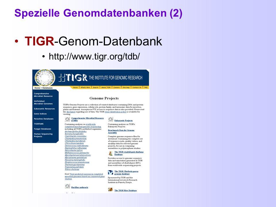 Spezielle Genomdatenbanken Entrez Genome (NCBI) http://www.ncbi.nlm.nih.gov/entrez/query.fcgi?db=Genome