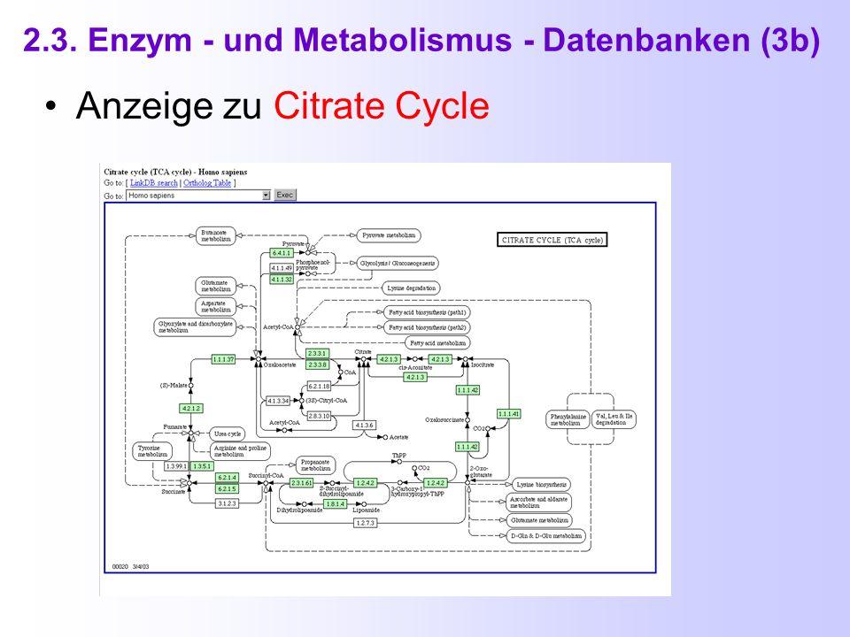 2.3. Enzym - und Metabolismus - Datenbanken (3) KEGG ( Kyoto Encyclopedia of Genes and Genomes ) http://www.genome.ad.jp/kegg/kegg2.html
