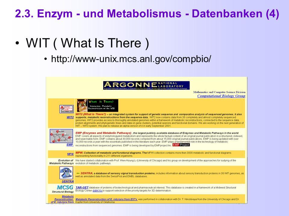 2.3. Enzym - und Metabolismus - Datenbanken (3b) Anzeige zu Citrate Cycle